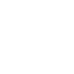 Flat Fox News Icon Flaticons Net